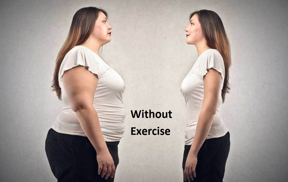 The Efficient Tips How To Weight Loss Without Exercise